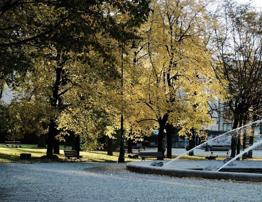 Park swietokrzyski
